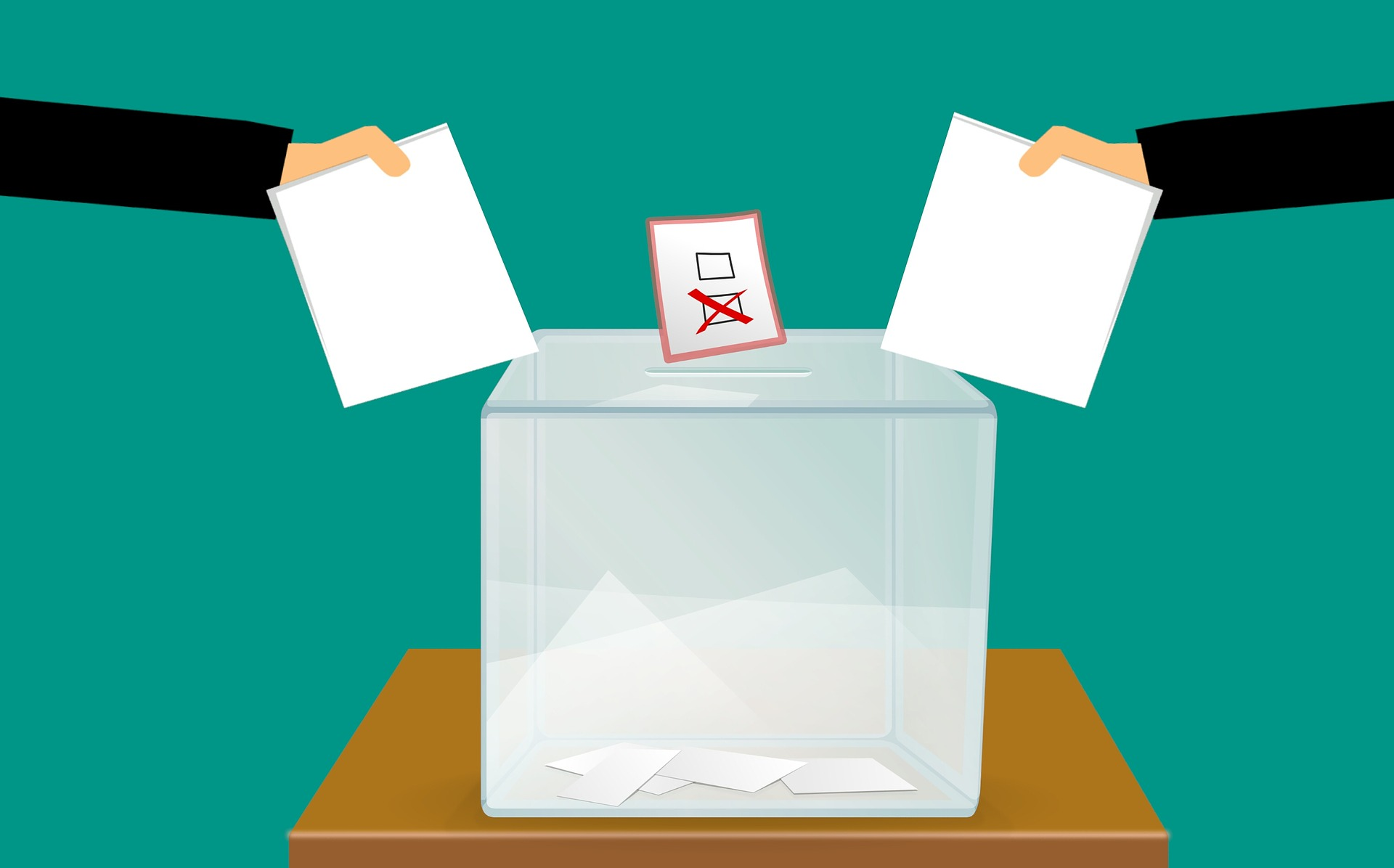 Vote in the Local Government Election